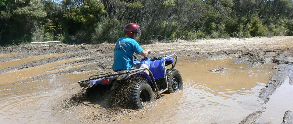 Endless Summer Quadbiking NZ